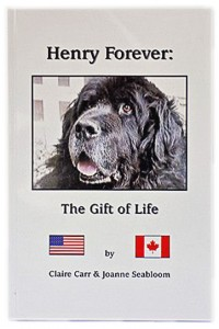 HenryForeverGiftofLife